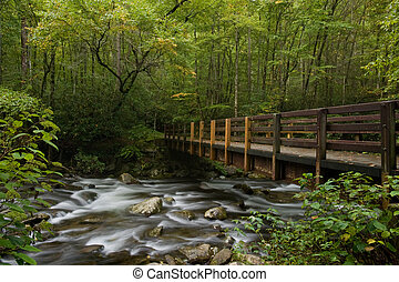 Mountain stream - Bridge over mountain stream in Great Smoky...