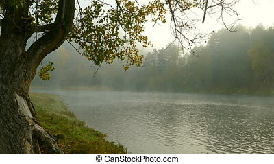 river landscape with fog in the morning