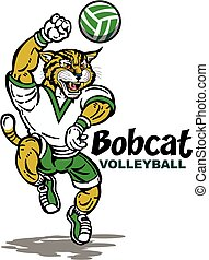 bobcat volleyball - cute bobcat volleyball team design with...