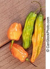 long peppers and habaneros - different kinds of peppers