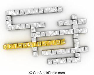 3d image Determination word cloud concept