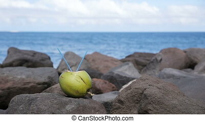 Coconut with drinking straw on the rocks