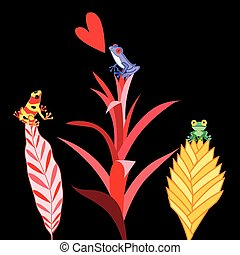 multi colored frogs - Beautiful multi-colored frogs in love...
