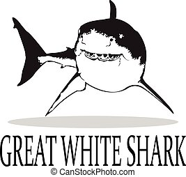 Sharks. - The Great White Shark in black and white.