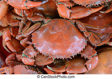 close up steamed serrated mud crab, mangrove crab - Pile of...