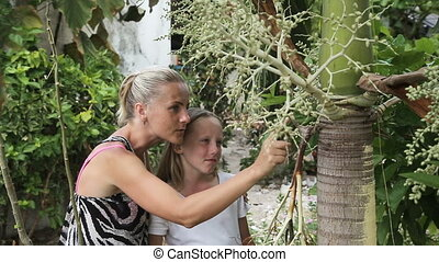 Mother and daughter looking at branch plant - Mother showing...