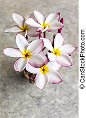 Top view of lovely flower plumeria bunch arrangement in mini...