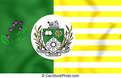 Flag of Saskatoon, Canada. - 3D Flag of Saskatoon, Canada....