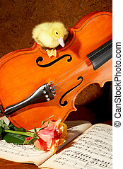 Duck on a fiddle