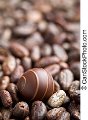 chocolate praline and cocoa beans
