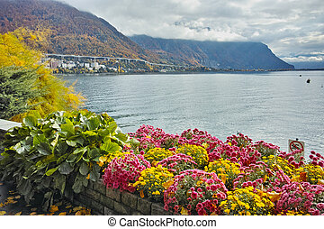 Amazing view Lake Geneva and Alps, Montereux, canton of...