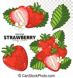 Strawberry Set, Vector. - Strawberry with Leaves, Vector....