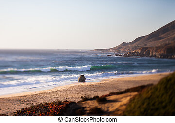 Sea Otter Beach, Carmel-By-The-Sea, California, tilt shift...