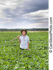 Farmer with fork in soybean field - Senior farmer carrying...