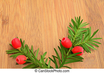 Yew twig - Two red yew berries on green twig over wooden...