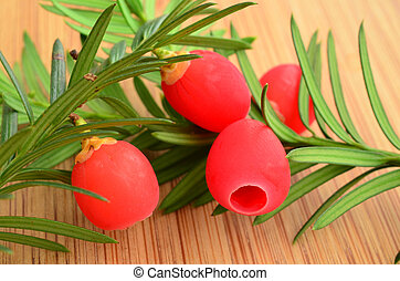 Yew berries - Four red yew berries on green twig over wooden...