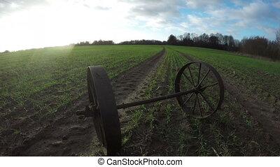 Pair of metal wheels of wagon