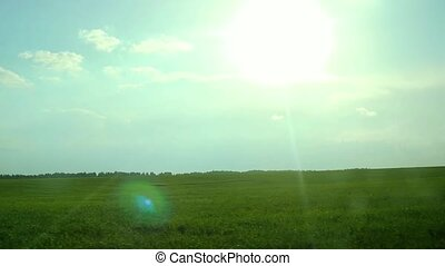 green rural field in a rays of sun in slowmotion - green...