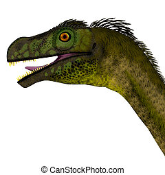 Ornitholestes Dinosaur Head - Ornitholestes was a small...