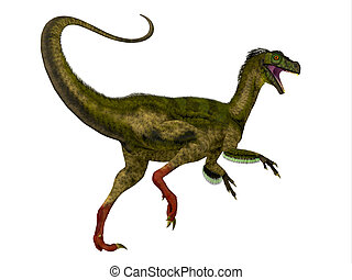Ornitholestes Dinosaur Tail - Ornitholestes was a small...