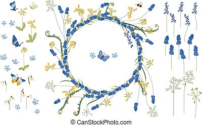 Detailed contour wreath with muscari and primrose flowers...