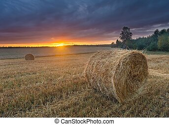 Straw bales on field against sky - late summer landscape...
