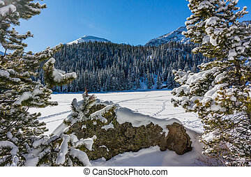 Snowy Boulder in Front of Bear Lake - A popular place to...