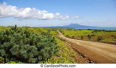 Road to vulcan Mendeleev on island - Landscape southern part...