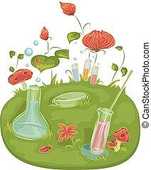 plantas, flores, experimento