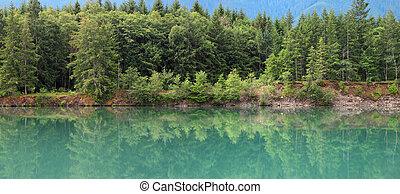 Riffe lake in Washington state