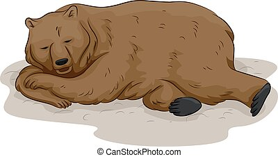 Bear Hibernation - Illustration of a Bear in the Middle of...
