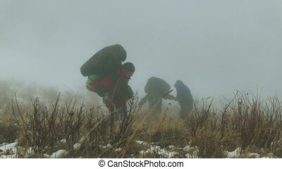 Toutrists Go In The Foggy Hills