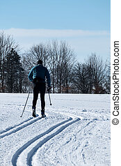 winter sports cross-country skiing