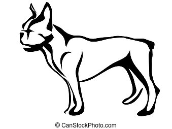 french bulldog. abstract silhouette isolated on white