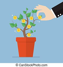 Hand pick a coin from money plant