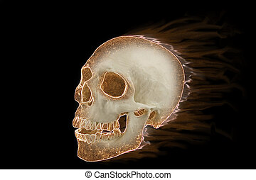 Human skull burning on black