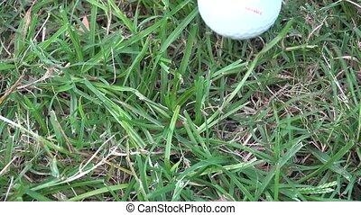 Golf Ball Close Up