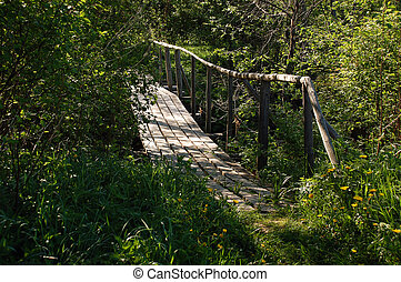 Bridge in the Backwoods - Bridge over a rivulet in the...