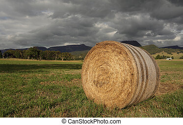Hay bale in late afternoon light