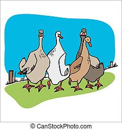 Four geese