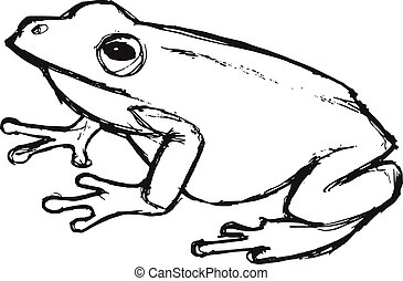 hand drawn, grunge, sketch illustration of tree frog - tree...