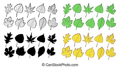 Set of leaves from trees.