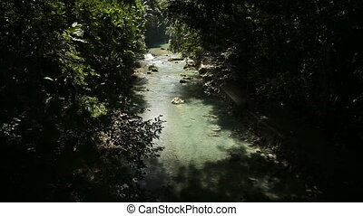 River in the rainforest in Cebu Philippines