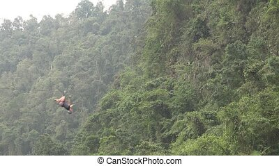Person on Forest Zip Line