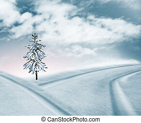 Snow covered road. Snow covered tree. winter landscape.