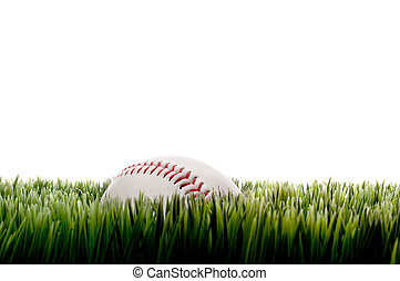 Horizontal image of a baseball on tall grass on white with copy space