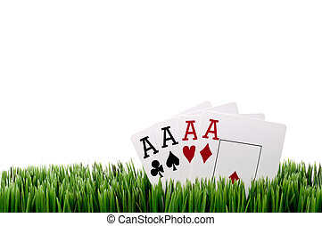 a horizontal image of four ace playing cards in grass with a white background