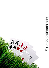 a tilted image of four ace playing cards in grass with a white background