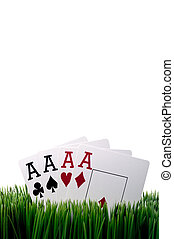 a vertical image of four ace playing cards in grass with a white background