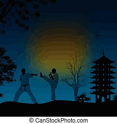 Karate in the beautiful landscape